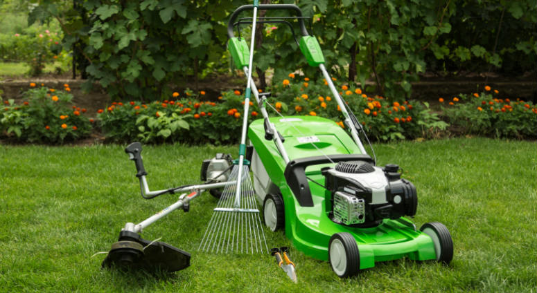 How To Find The Best Lawn Care Companies In Boston Ma